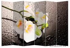 """Ширма """"Белая орхидея и капли"""" 6"""